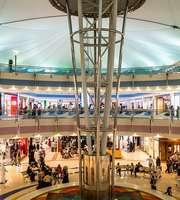 An Tour In Glitzy Dubai