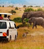 Exhilarating Johannesburg Tour Package