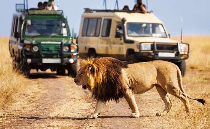 Rejuvenating Kenya Tour Package