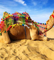 Jaisalmer Tour Package For 2 Nights 3 Days