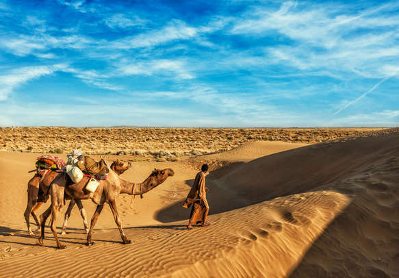 Breathtaking Desert safari in Rajasthan