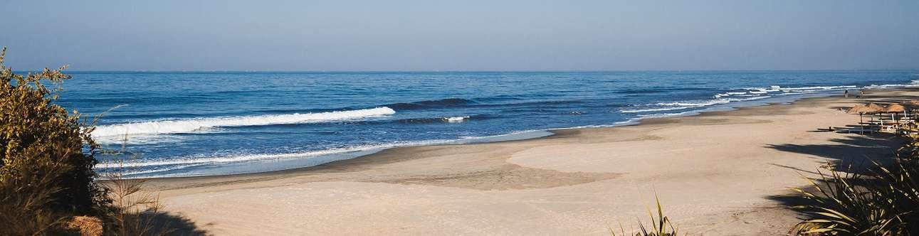Spend some time at Morjim Beach