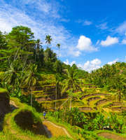 Blissful Bali Honeymoon Package From Ahmedabad