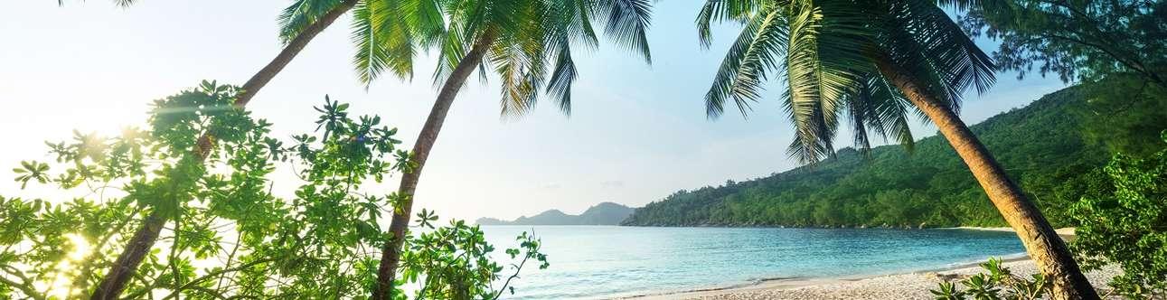 Beautiful Island in Seychelles