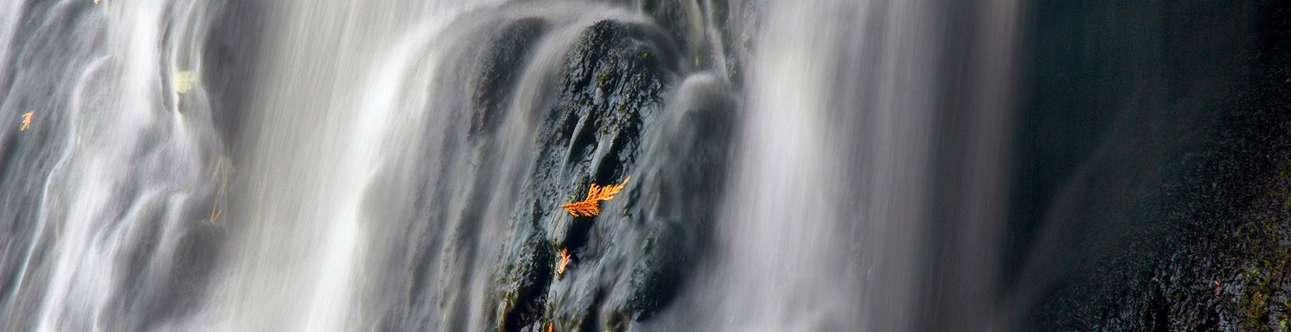 Iruppu Falls Timings | Best Time to Visit Iruppu Falls (Coorg)
