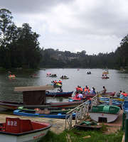 Ooty Tour Package For 2 Days By Bus From Bangalore