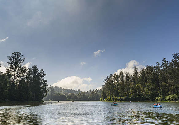 Absorb the beauty of picturesque Ooty lake