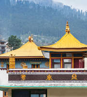 Delightful Shimla Kullu Manali Tour Package From Delhi