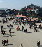 Shimla Honeymoon Package From Kolkata