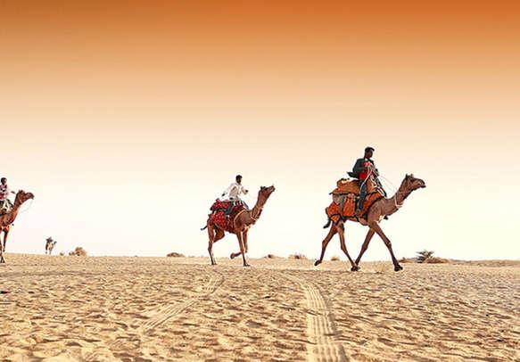 Enjoy an exciting Camel Ride