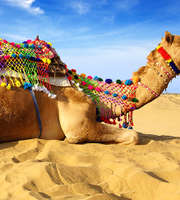 Exciting Rajasthan Tour Package