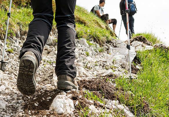 Enjoy the trekking in Kodaikanal