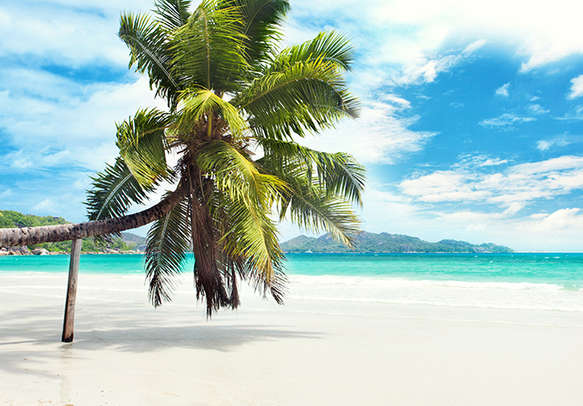 Sun, sand, and surf in Seychelles