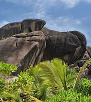 The Perfect Seychelles Honeymoon Tour Package