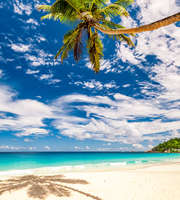 Alluring Mauritius Honeymoon Package From Hyderabad