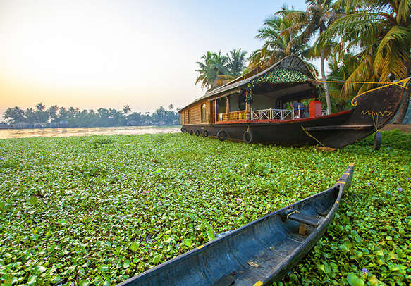 Enjoy the amazing beauty of Munnar