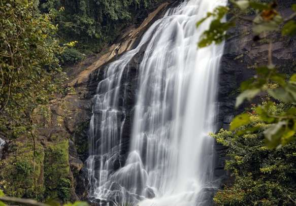 Drink in the sight of Cheeyappara Waterfalls