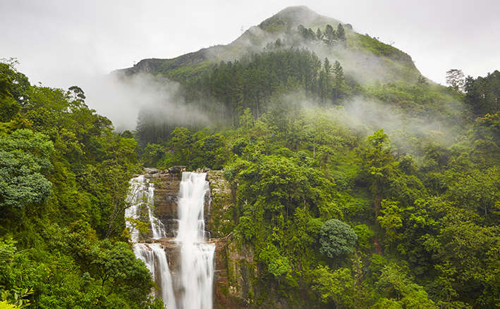 Sri Lanka 11 Days Trip Package