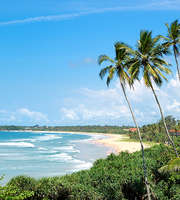 Sri Lanka Honeymoon Package From Mumbai