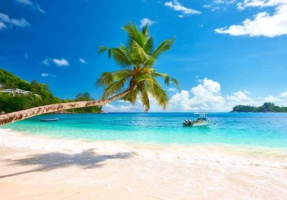 Laze on the beautiful beach
