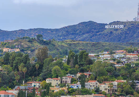 Enjoy a grand tour in Hollywood