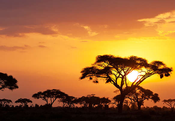 Wonderful view of Tanzania