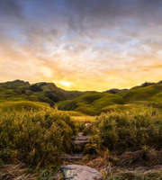 Enchanted Nagaland Honeymoon Tour Package