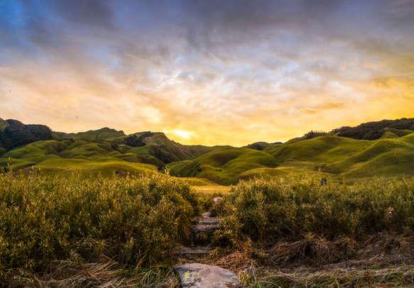 Dzukou Valley, Nagaland