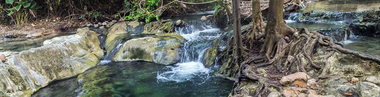 Hot Spring In Krabi