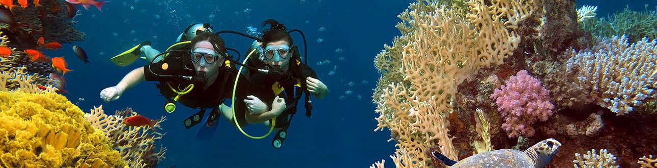 Scuba Diving In Krabi