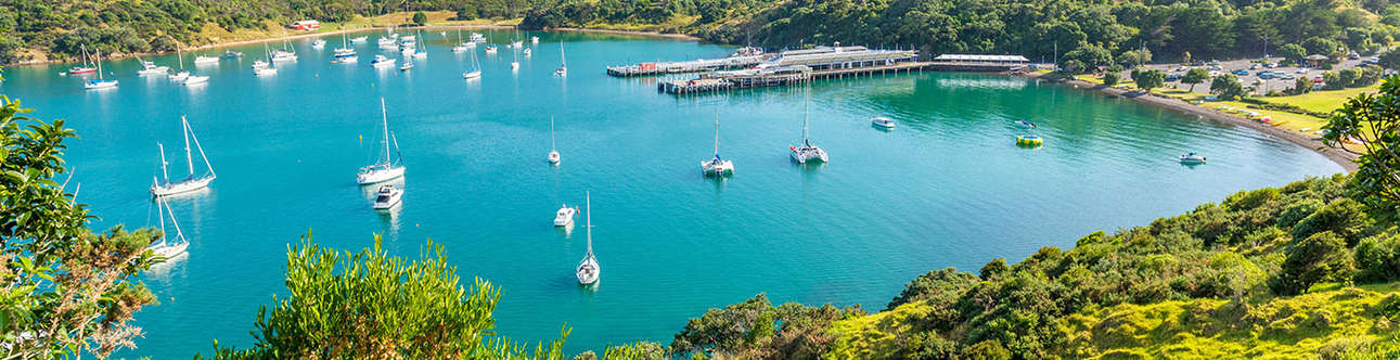 Enjoy the magnificent views in Waiheke-Islands