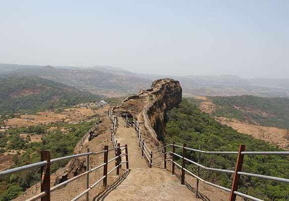 The flourishing flora of Mahabaleshwar welcomes you with open arms
