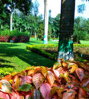 Hyderabad Tour Package From Thrissur
