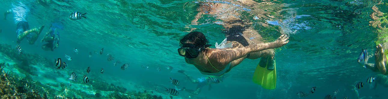 Enjoy snorkeling at your leisure day in Mauritius