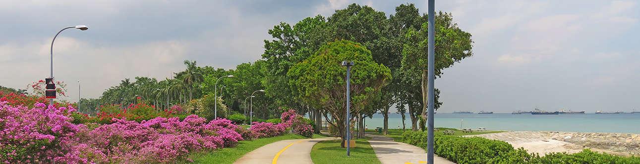 Visit the East Coast Park in Singapore