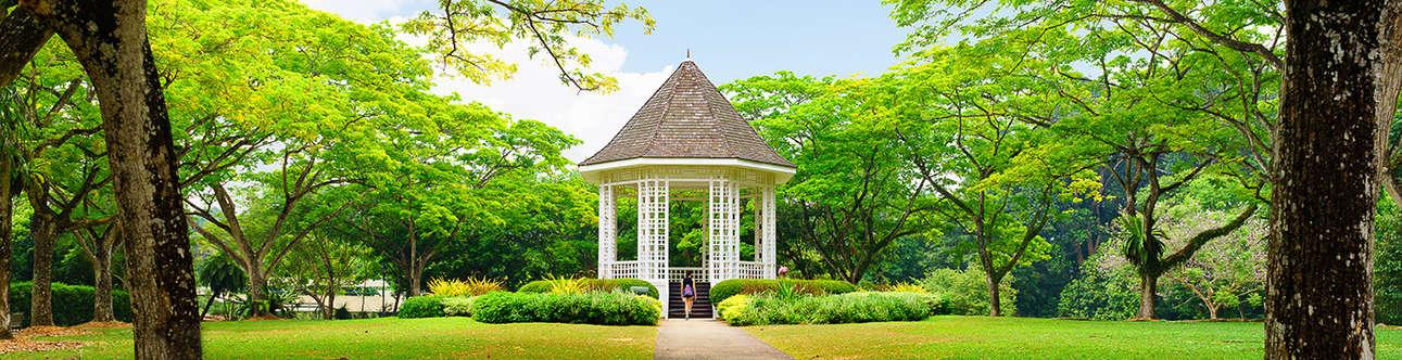Visit the amazing Singapore Botanic Garden