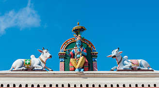 Witness the Dravidian architecture at Sri Mariamman Temple