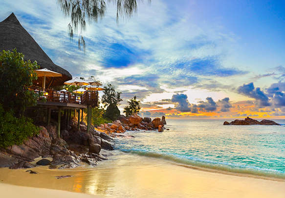 Nature in its full bloom in Seychelles