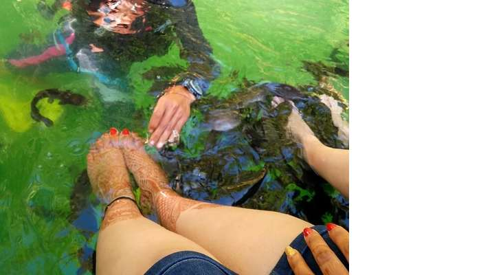 Firsh Pedicure while on the Island hopping tour