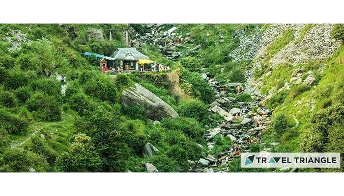 Nature of McLeodganj