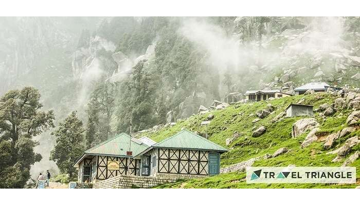 Nature in Triund