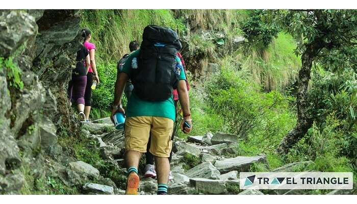 Trekking in Triund