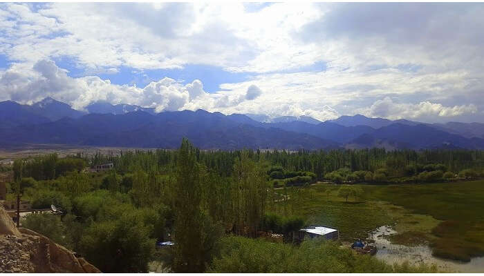 View of the beautiful town of Leh