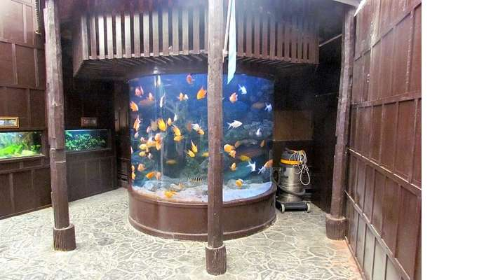 a small exhibition of fishes in thailand