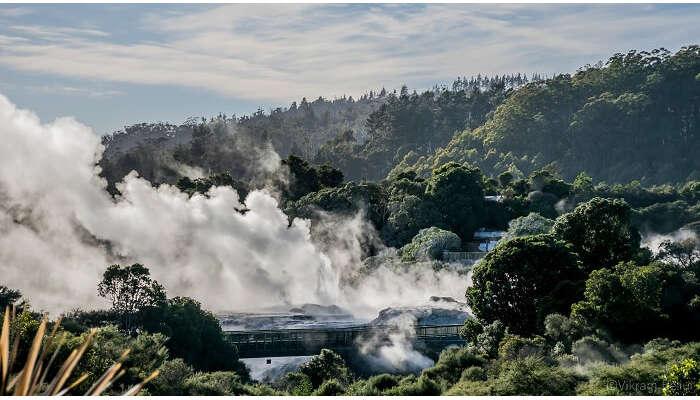 Natural beauty of Rotorua