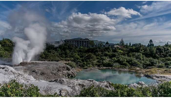 geo thermal spring in new zealand