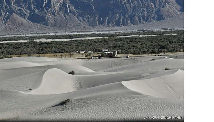 lokpal romantic trip to ladakh: nubra valley
