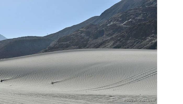 lokpal romantic trip to ladakh: nubra cold desert