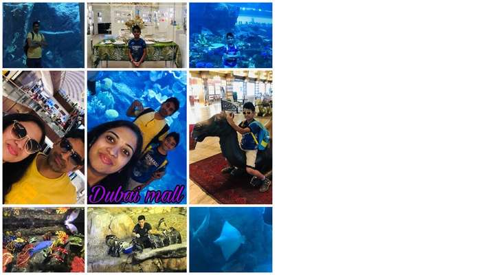 dubai mall tour with family