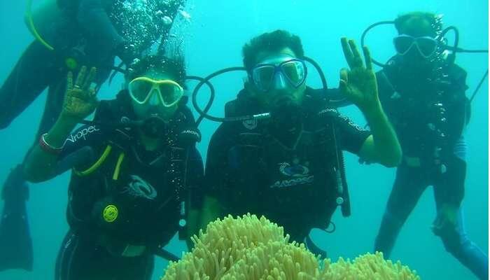experience the underwater scene